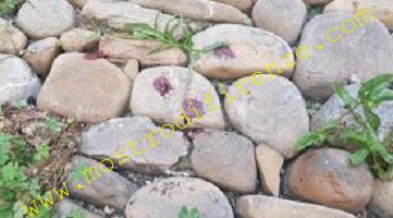 <b>30 Luglio 1984 La scoperta del sangue sulle pietre della Sieve da parte di Pietro Pasquini</b>
