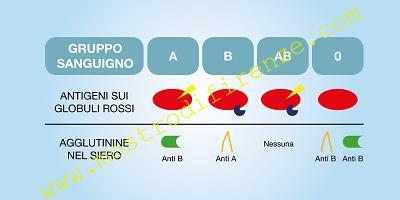 <b>2 Maggio 1986 Accertamento del gruppo sanguigno di Salvatore Vinci</b>